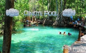 Center Parcs bois aux daims - cenote pool