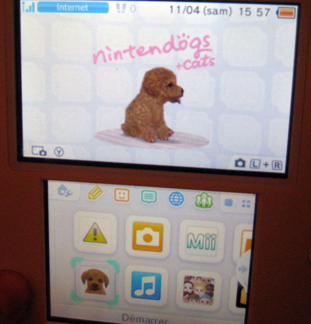 Nintendogs Cats Magasin