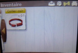 Nintendogs + cats - inventaire 2