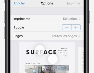 printpdf-web-iphone